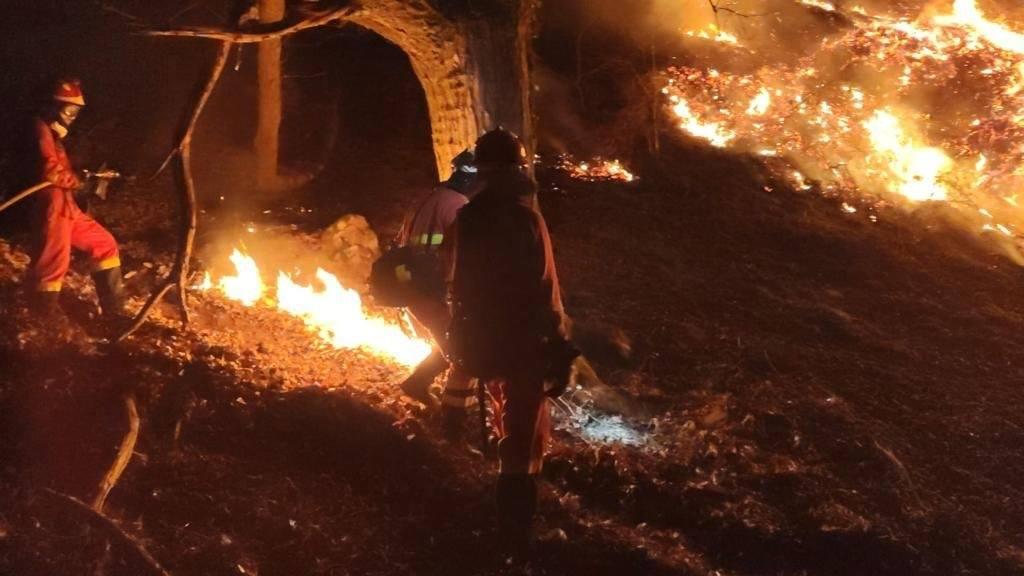 Incendio Navarra