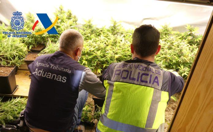 Detenida una organización de tráfico de drogas procedente del Caribe